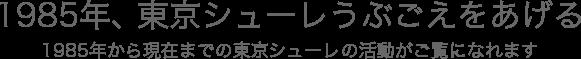 1985年、東京シューレうぶごえをあげる 1985年から現在までの年表をこのサイトでご覧になれます